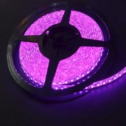 лента светодиодная 3528/120-12-P (IP65)/12в, 9,6вт/м, 120шт/м, розовый