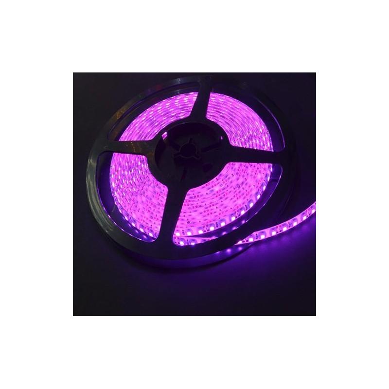 лента светодиодная 3528/120-12-P (IP65) 12в, 9,6вт/м, 120шт/м, розовый