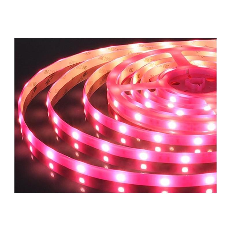 лента светодиодная 5050/30-12-P (IP65) 12в, 7.2вт/м, 30шт/м, розовый