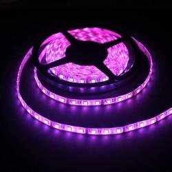 лента светодиодная 5050/60-12-P (IP65)/12в, 14.4вт/м, 60шт/м, розовый