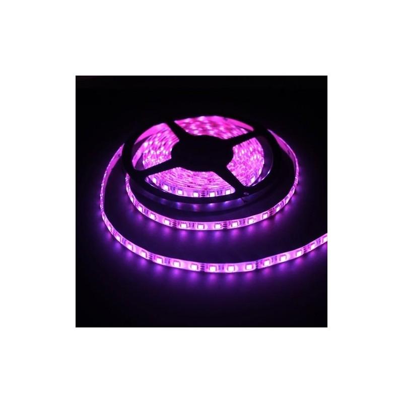 лента светодиодная 5050/60-12-P (IP65) 12в, 14.4вт/м, 60шт/м, розовый