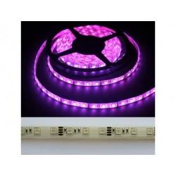 лента светодиодная 5050/60-12-P/12в, 14.4вт/м, 60шт/м, розовый