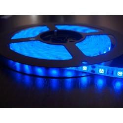 лента светодиодная 5050/60-12-B/12в, 14.4вт/м, 60шт/м, синий