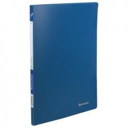 """Папка с 20 вкл. BRAUBERG """"Бюджет"""" синяя (222628)"""
