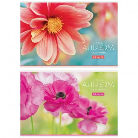 """Альбом для рисования 20л. """"Цветы. Tenderness"""" Спейс (А24 26202)"""