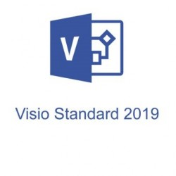 Visio Std 2019 32/64 Russian Central/Eastern Euro Only EM DVD