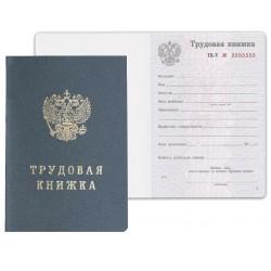 """Бланк документа """"Трудовая книжка"""" (121229)"""