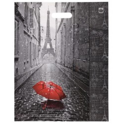 """Пакет с вырубной ручкой ПВД, 45х38см, """"Мой Париж"""""""