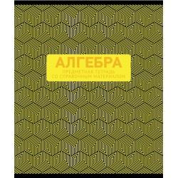 "Тетрадь предметная 48л. ""Металлик - Алгебра"" ПЗБФ (029099)"
