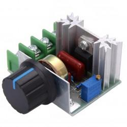 Регулятор напряжения AC 50-220V max2000W