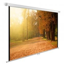Экран 125x200см настенно-потолочный Cactus CS-PSWE-200x125-WT