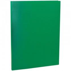 Папка с пружинным скоросшивателем Спейс 15мм. 500мкм. зеленая (FS5 320)