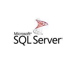 SQL Svr Standard Edtn 2019 English DVD 10 Clt 228-11548