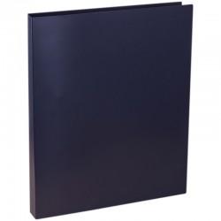 Папка 2 кольца Спейс 25мм. 500мкм. черная (F2R1 302)