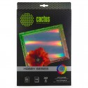 Бумага Cactus 260 г/м2, А4, HOBBY, лазерно-зеркальная, 10л. CS-DA426010M